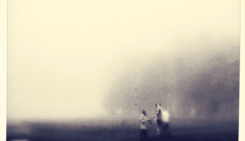 iphoneography - horse and handler