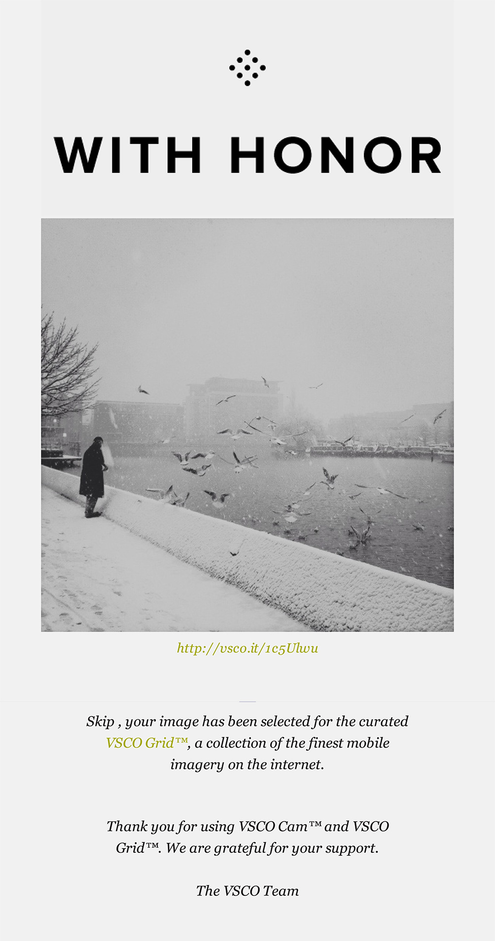 iphone photography - curated vsco grid (winter birds)